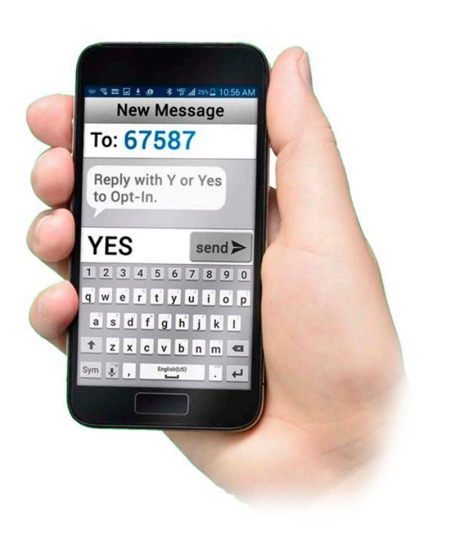 "phone showing a text message ""YES"" sent to ""67587"""